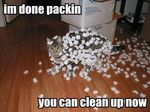 im-done-packing-you-can-clean-up-now-cat-covered-i[1].jpg
